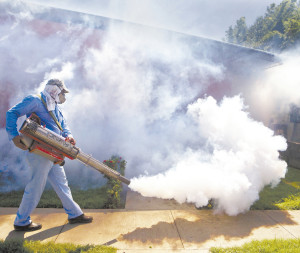 A health ministry worker fumigates for mosquitoes that transmit dengue and chikungunya in Managua, Nicaragua, Wednesday, Nov. 5, 2014. Nicaragua's health ministry announced on Tuesday that they have detected 225 cases of chikungunya nationwide, this year. (AP Photo/Esteban Felix)