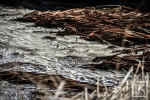 iceland-photos-41